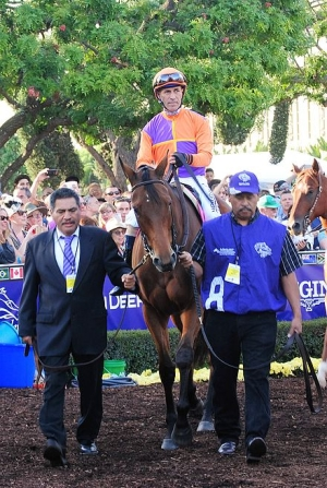 WHAT HORSE WON THE LAS VIRGENES STAKES (GII) AND WENT ON TO WIN THE BREEDERS' CUP DISTAFF (GI) TWICE?