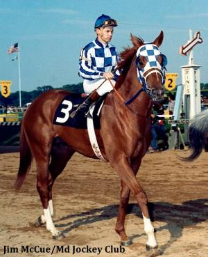 "WHAT HORSE WON THE MAN O"" WAR STAKES AND A TRIPLE CROWN RACE?"