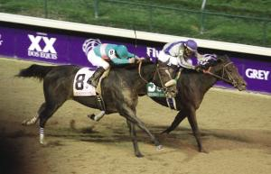 WHAT HORSE WON THE FAYETTE STAKES AS A 3-YEAR-OLD AND IN THE NEXT YEAR WON THE BREEDERS' CUP CLASSIC?