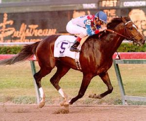 WHAT HORSE STOPPED CIGAR'S WINNING STREAK AT 16 CONSECUTIVE WINS?